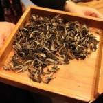 Yue Guang Bai - liście