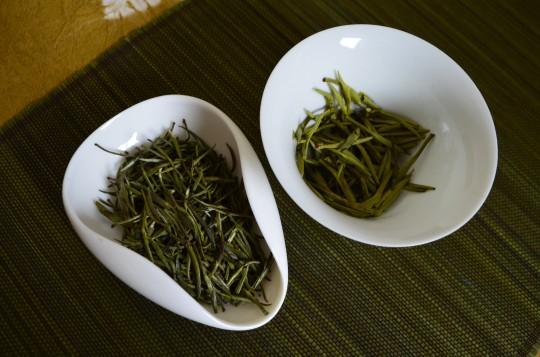 Junshan Yinzhen - przed i po parzeniu, fot. Anna Włodarczyk