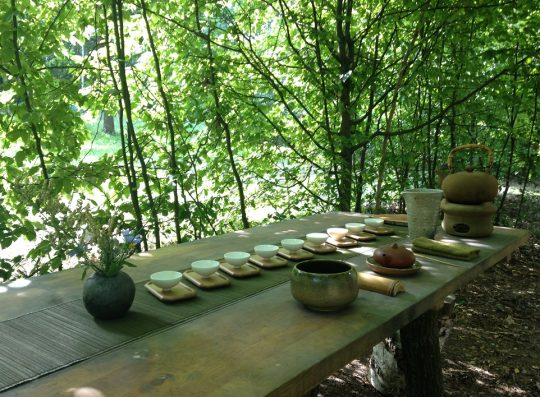 Kącik herbaciany pod lipą czeka na plenerowiczów, fot. AW